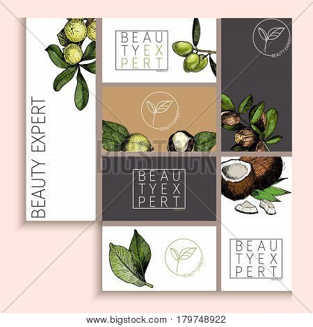 Vector set of cosmetic branding. Packaging design for beauty brand identity. Natural care products. Hand drawn macadamia olive argan cococnut. Colored elements. Use for shop or product advertisement.