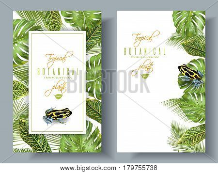 poster of Vector tropical vertical banners with monstera, croton leaves and little frog. Exotic design for cosmetics, spa, perfume, health care products. Can be used as wedding or summer background