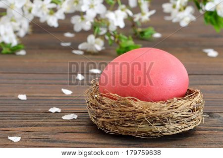Easter card with Easter egg in the nest and spring flowers