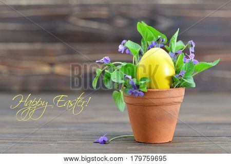 Happy Easter card with Easter egg and violet flowers in the pot