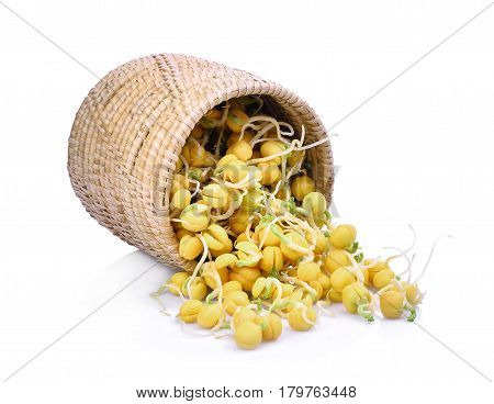 snow pea sprouts in wooden basket isolated on white background