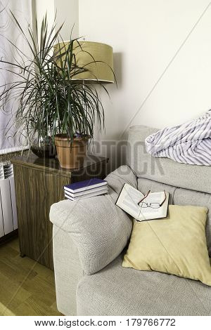 book and glasses on the top of the arm of a sofa with some green plants