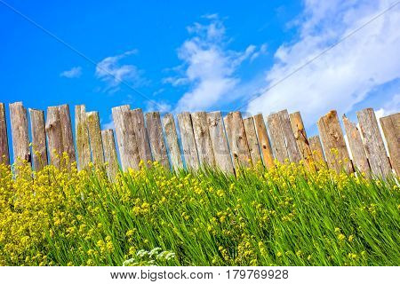 Pastoral wooden fence. Palisade from boards of trees. Village full of flowers. Rural life outside the city. Landscape on bright flower.