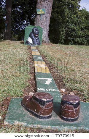Bwindi Impenetrable Forest National Park Uganda - February 28 2017 : Gorilla tracking proximity guide at Bwindi Impenetrable National Park Uganda.