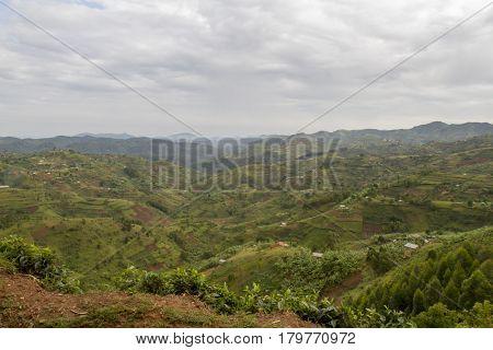 Hillside Landscape Rwanda, Africa