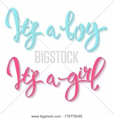 Calligraphy lettering It's a boy. Vector hand drawn invitation to the baby shower for a boy and a girl
