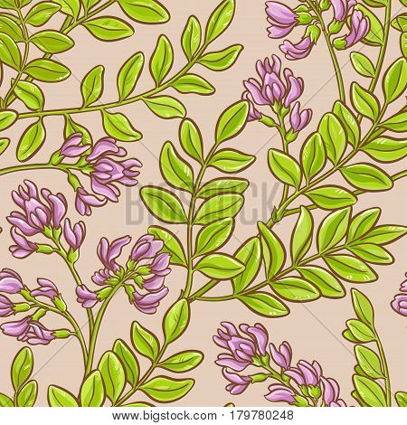 astragalus vector seamless pattern on color background