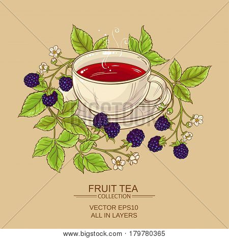 cup of blackberry tea on color background