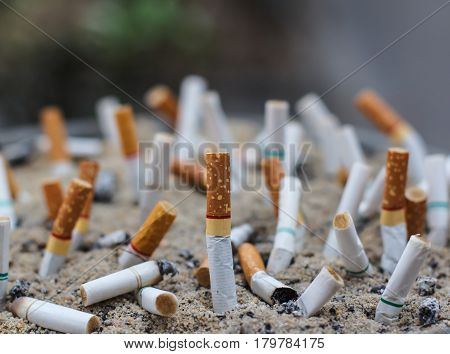 The Cigarette butts in the ashtray dirty.