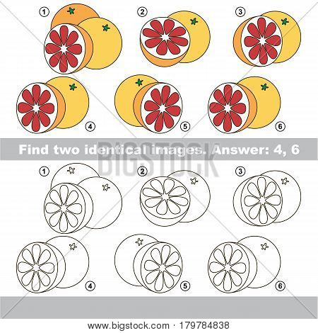 The educational kid matching game for preschool kids with easy gaming level, he task is to find similar objects, to compare items and find two same Grapefruits.