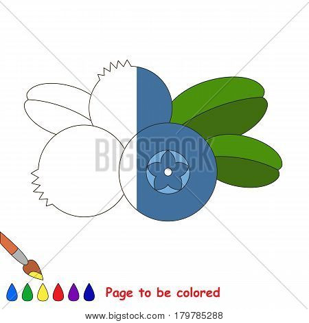 Blue Blueberry, the coloring book to educate preschool kids with easy gaming level, the kid educational game to color the colorless half by sample.