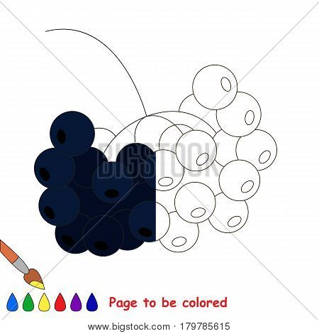 Black Rowan, the coloring book to educate preschool kids with easy gaming level, the kid educational game to color the colorless half by sample.