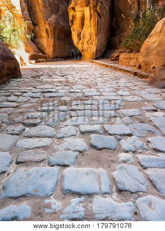 Stone Pavement Of Al Siq Passage To Ancient Petra