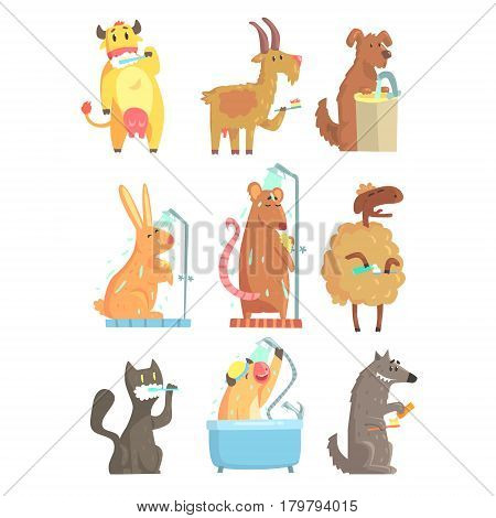 Funny animals taking a shower and washing, set for label design. Hygiene and care cartoon detailed Illustrations isolated on white background