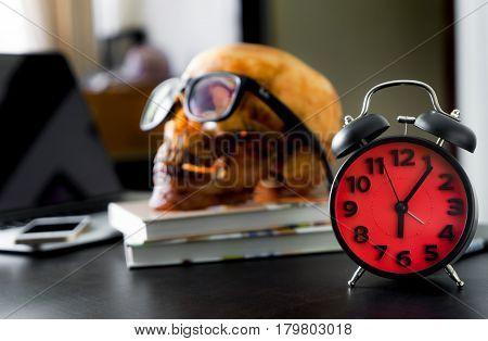 Dead Office worker skull after overtime work until morning