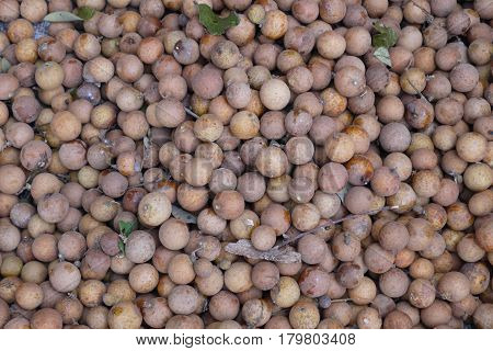 Longan -- fruit, with a thin peel which very easily departs from pulp that allows to eat it quickly and without troubles