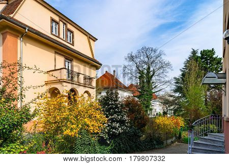 Classic French House In Residential District Of Strasbourg, Blossom Spring Time, Flowering And Garde