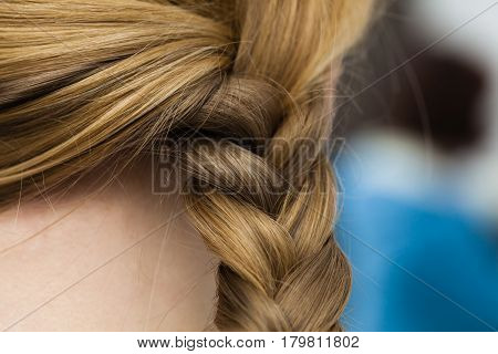 Closeup Of Woman Blonde Braided Hair