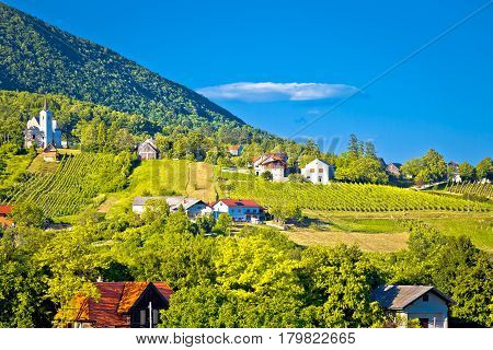 Plesivica Village In Green Nature