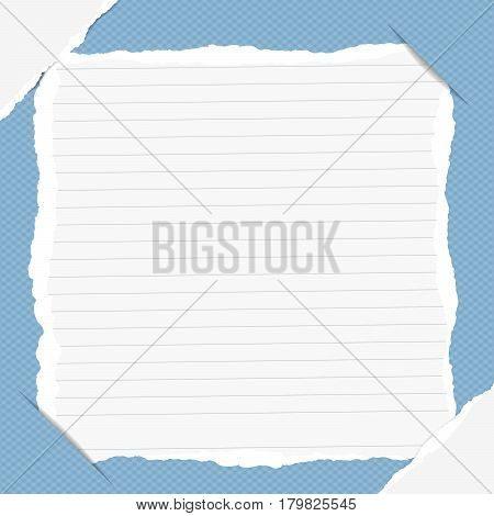 Torn ruled note, copybook, notebook sheet inserted into blue squared background with white ripped paper in corners.