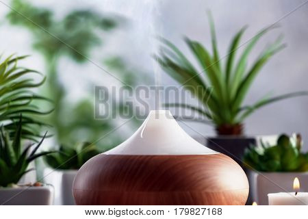 Aroma oil diffuser and plants on background