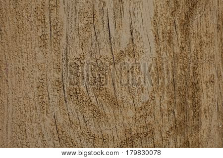 Texture of old wooden door. Brown old wood texture. Abstract grunge wood texture and background. Old vintage door background. Abstract texture and background for designers. Vintage wood.