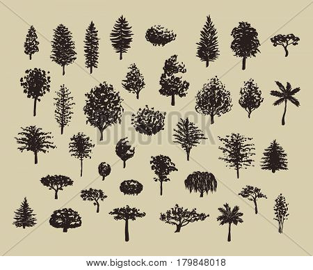Big set of hand drawn forest trees silhouettes vector illustration in vintage brown colors.