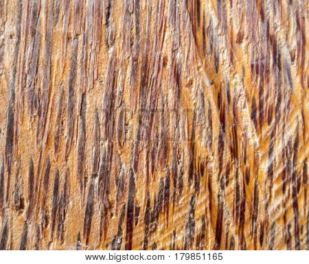 Natural wood texture with warm yellow color. Wooden texture closeup. Weathered timber with scratches and cracks. Natural ecological material surface. Wooden board macro photo. Rustic lumber background