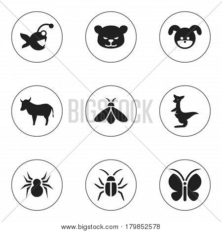 Set Of 9 Editable Animal Icons. Includes Symbols Such As Puppy, Cow, Arachind And More. Can Be Used For Web, Mobile, UI And Infographic Design.