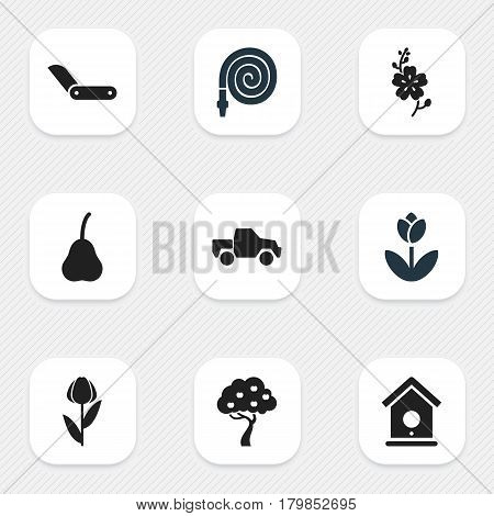 Set Of 9 Editable Plant Icons. Includes Symbols Such As Clasp Knife, Daffodils, Hosepipe And More. Can Be Used For Web, Mobile, UI And Infographic Design.