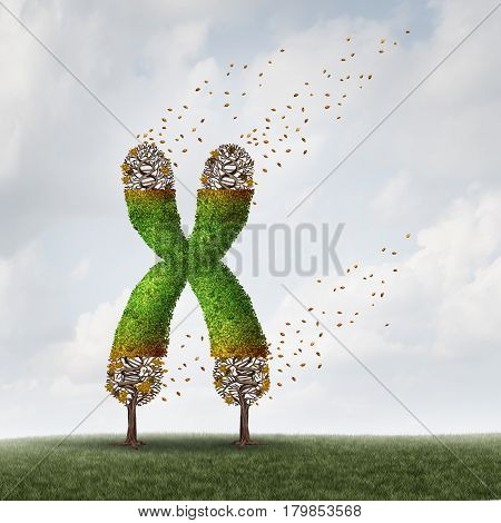 Telomeres length loss with DNA and shortening telomere medical concept as a tree with falling leaves on the end caps of a chromosome as a symbol for aging and living a shorter life due to genetic age damage with 3D illustration elements.