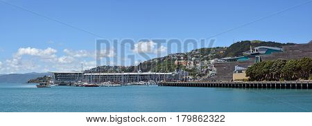 Wellington New Zealand - November 18 2016: Panoramic view of Wellington Harbour Oriental Bay Clyde Quay Wharf and Mount Wellington. In the foreground is the Museum of New Zealand Te Papa Tongarewa.