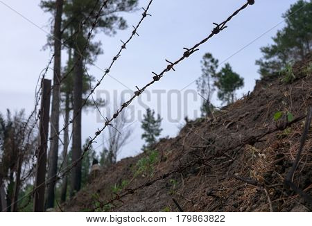 Barded wire in the forest with scorched earth. Focus in front background is blurred.