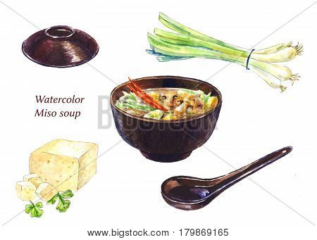 Miso sup set. Watercolor illustrations isolated on white.