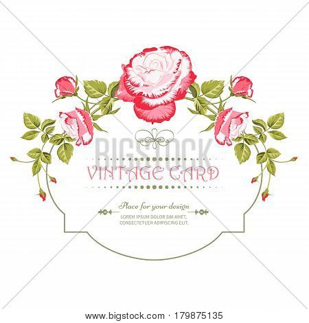 Vintage card with a bouquet of beautiful pink roses isolated on a white background.Spring flower garlands.Label with pink flowers.Vector illustration.