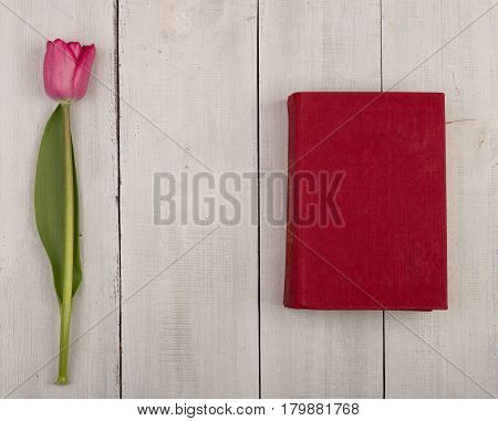 Flower Tulip And Vinous Book On A White Wooden Table