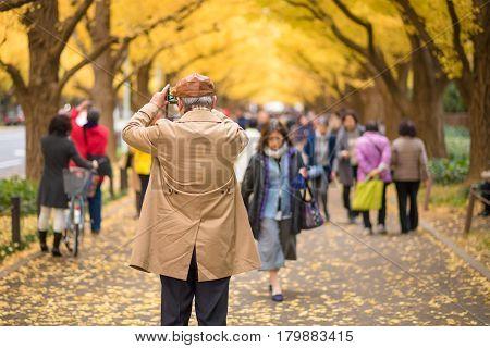 TOKYOJAPAN- NOV 22 :Tourists at Meiji Jingu Gaien in Tokyo Japan on November 22 2016.Meiji Jingu Gaien that has beautiful Ginkgo along the lenght of the street famous for autumn spot in TokyoJapan