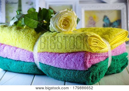 Fresh Terry Towels