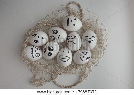 Eggs In A Grid Photo For Your Design