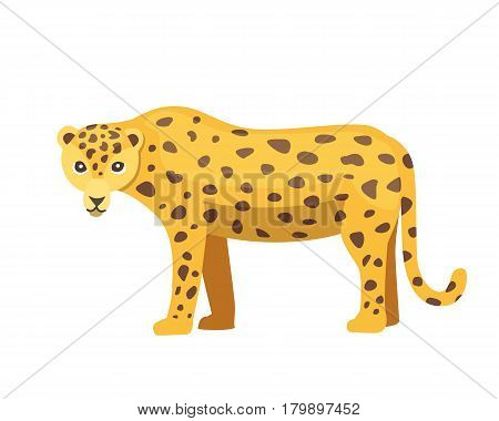 Jaguar cat panther cartoon illustration isolated in flat style
