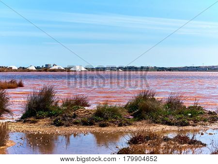 Las Salinas Of Torrevieja. Spain