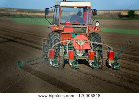 Tractor Sowing Corn Seeds In Spring