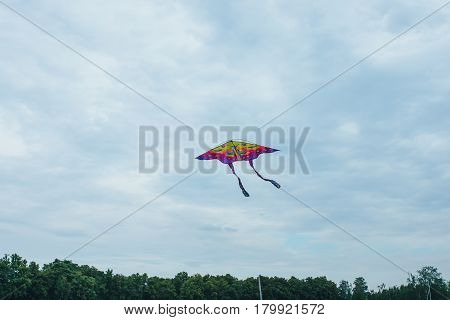 Flying colorful children's kite, dark sky with clouds.  Favorite children's game.