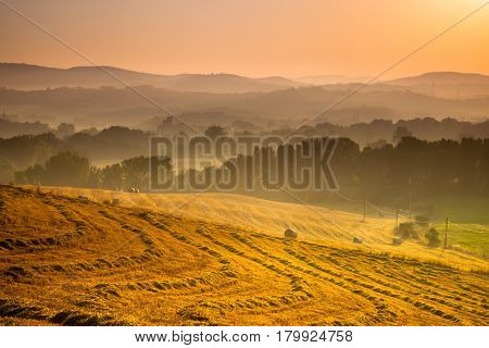 Tuscan Countryside At Dawn, Italy