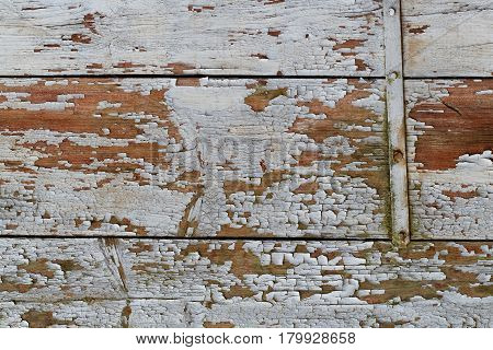 Exfoliating Wooden Planking Originally Coated with White Colour