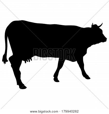 Black silhouette of cash cow on white background.