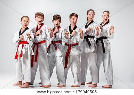 The studio shot of group of kids training karate martial arts and posing on gray backlground