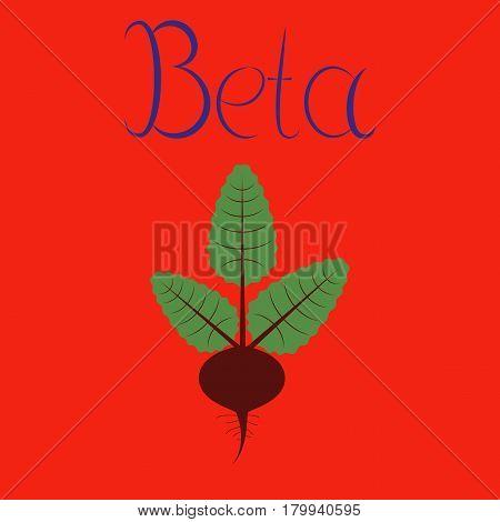 flat illustration on stylish background plant beta