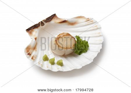 Seared scallop served in a shell