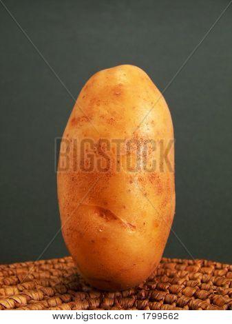 Standing Potato #3